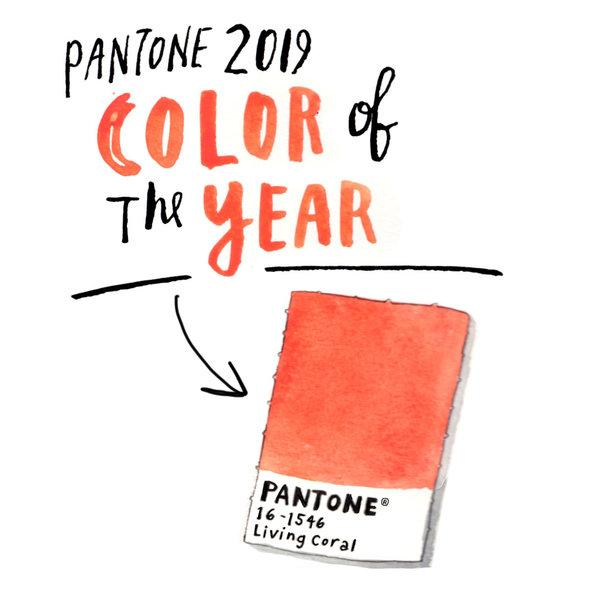 pantone color | A & S Carpet Collection